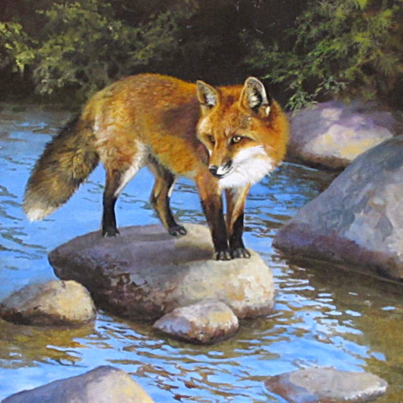 Wildlife Art