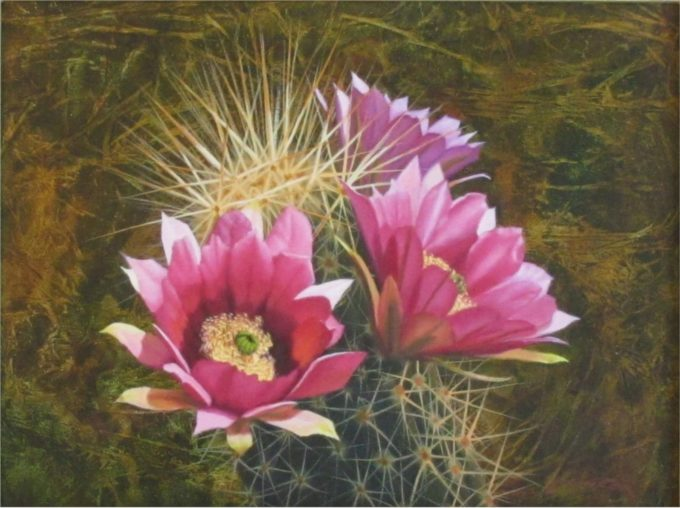 John Cox Painting Cactus Blossom Oil on Board
