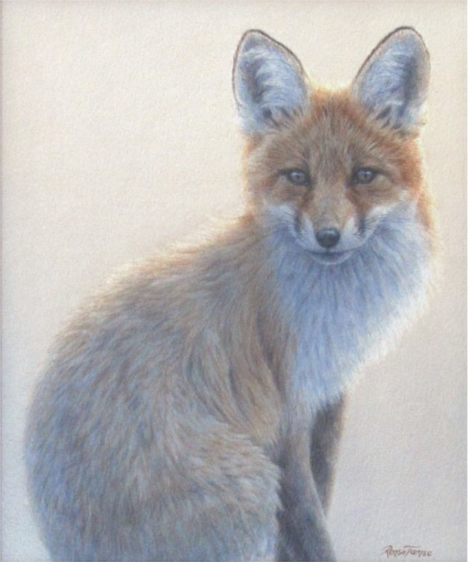 Renso Tamse Painting Brother Fox Watercolor