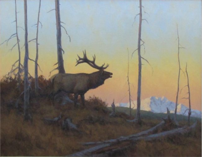 Scott Yeager Painting Evening Call (Bugling Elk) Oil on Board