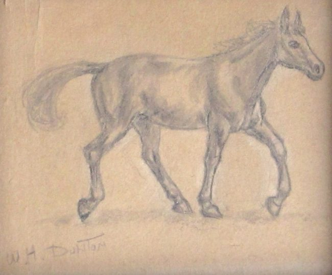 William Herbert (Buck) Dunton Drawing Horse #2 Pencil