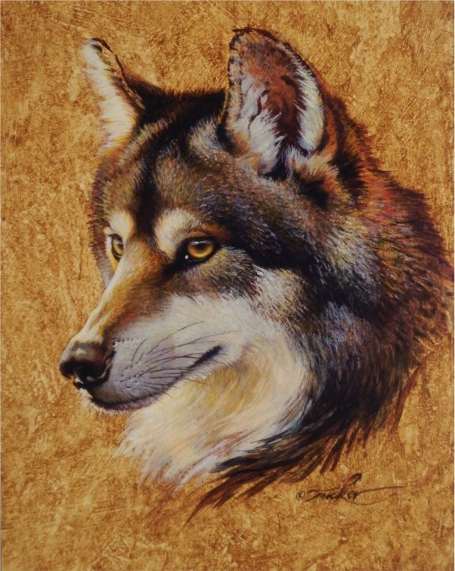 Ezra Tucker Painting Gray Wolf Portrait Acrylic on Panel