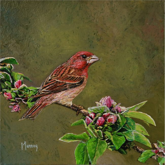Karla Murray Painting Purple Finch and Flower Buds Oil on Board