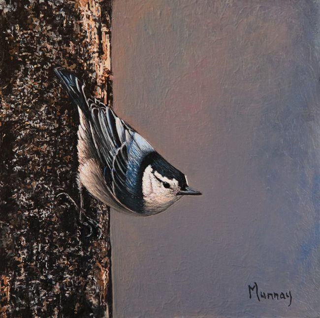 Karla Murray Painting For the Love of The Nuthatch Oil on Board