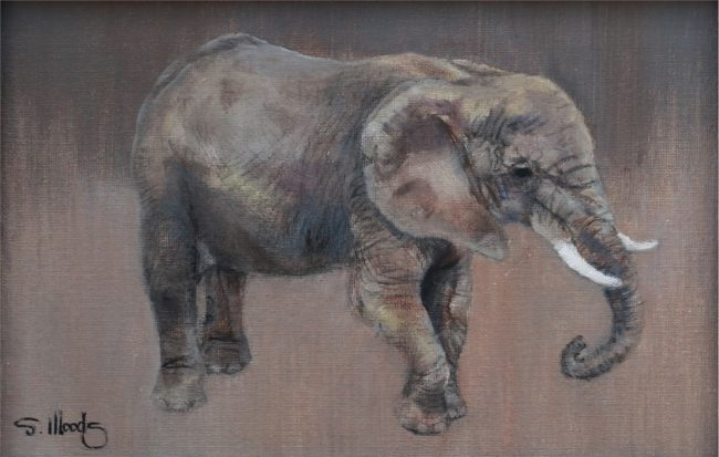 Sarah Woods Painting Elephant Study Mixed Media on Canvas