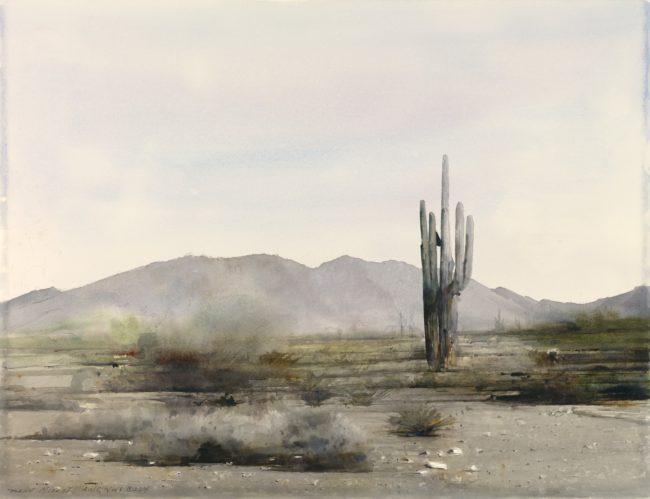 Dean Mitchell Painting Arizona Cactus Watercolor