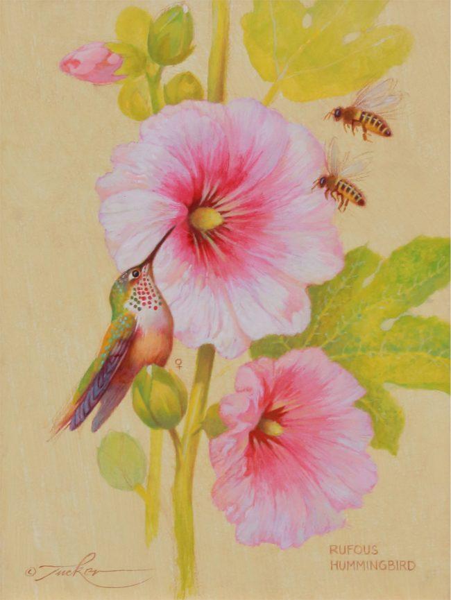 Ezra Tucker Painting Rufous Hummingbird & Honey Bees Acrylic on Board