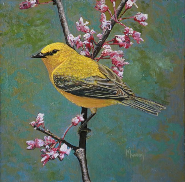 Karla Murray Painting In The Garden With Bird Song - Blue Winged Warbler Oil on Board