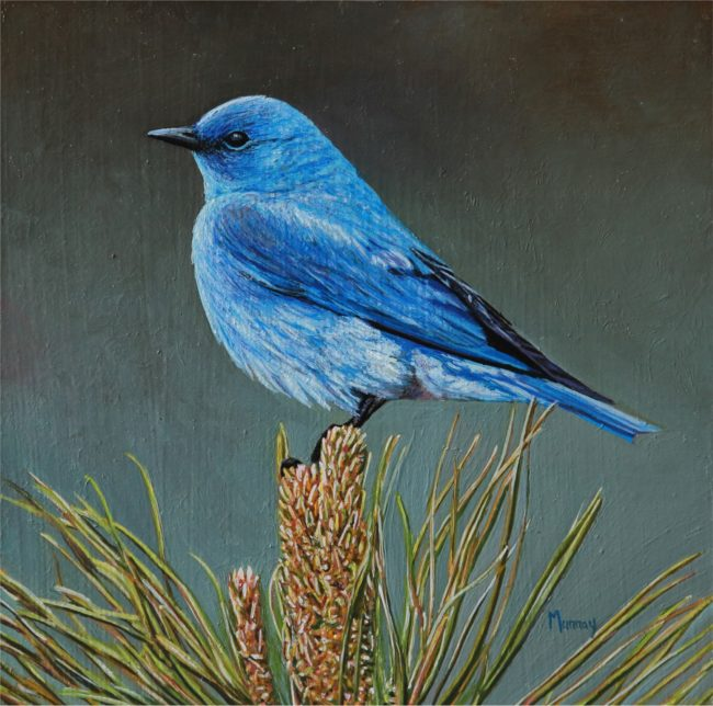 Karla Murray Painting On Top of a Ponderosa - Mountain Blue Bird Oil on Board