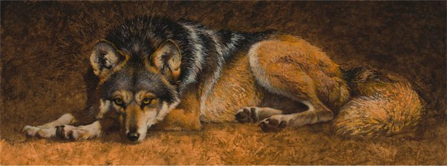 Ezra Tucker Painting Mexican Gray Wolf Acrylic on Panel