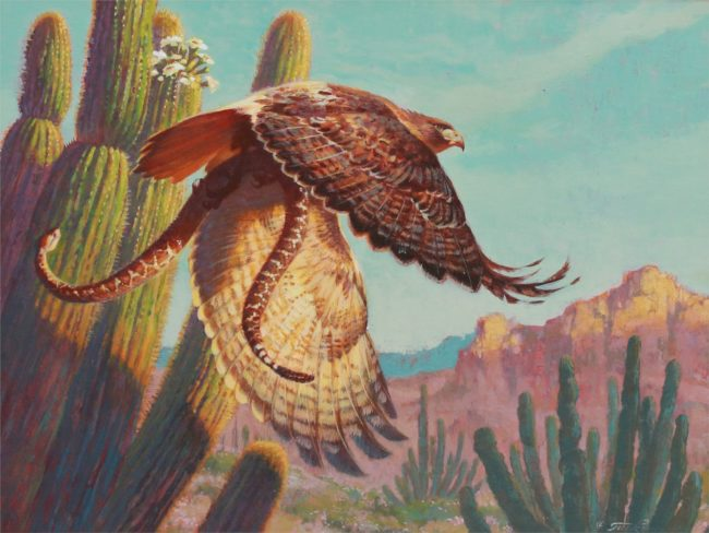Ezra Tucker Painting Redtail and Rattler Acrylic on Canvas