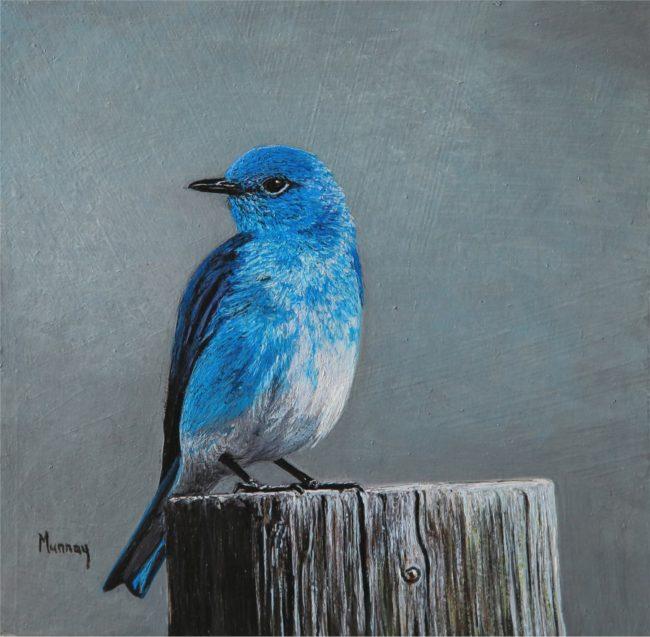 Karla Murray Painting Blue Shimmer - Mountain Blue Bird Oil on Board