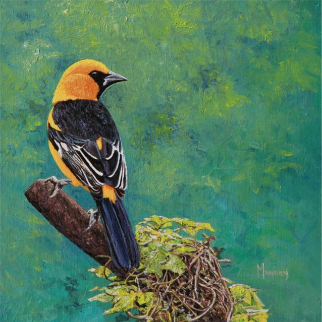 Karla Murray Painting Forest Canopy - Baltimore Oriole Oil on Board