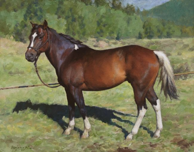 Benjamin Wu Painting Pony The Horse Oil on Canvas