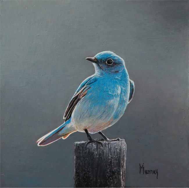 Karla Murray Painting Cool Weather - Mountain Blue Bird Oil on Board