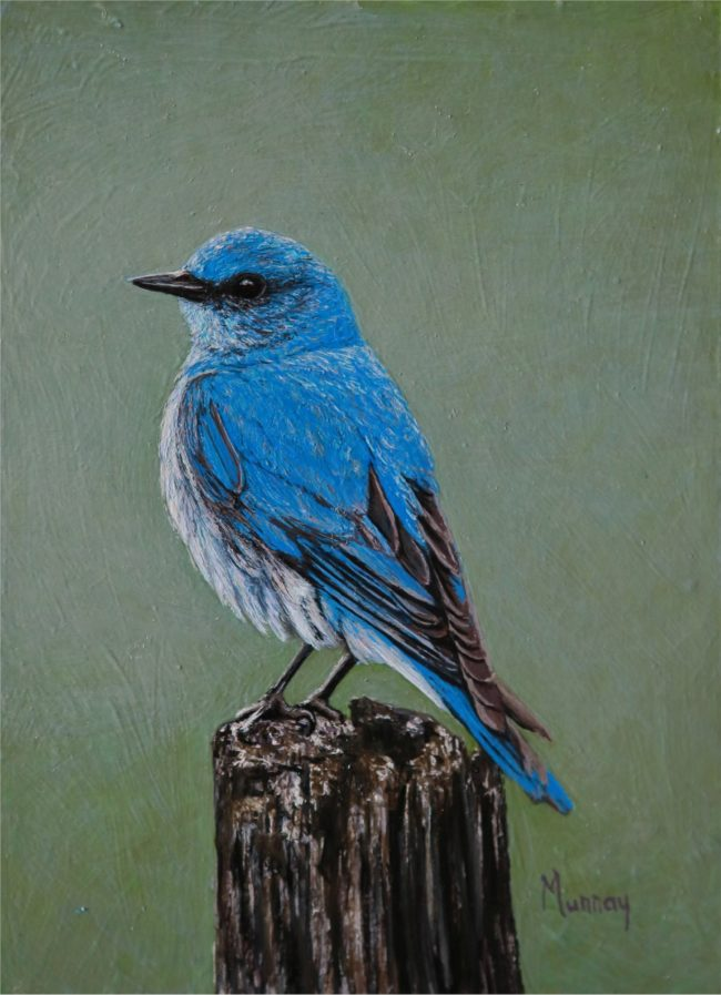 Karla Murray Painting The Visitor - Mountain Blue Bird Oil on Board