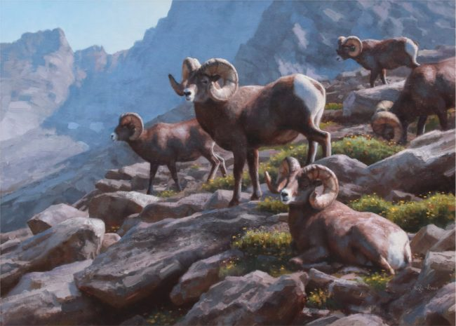 Kyle Sims Painting Bighorn Habits Oil on Linen