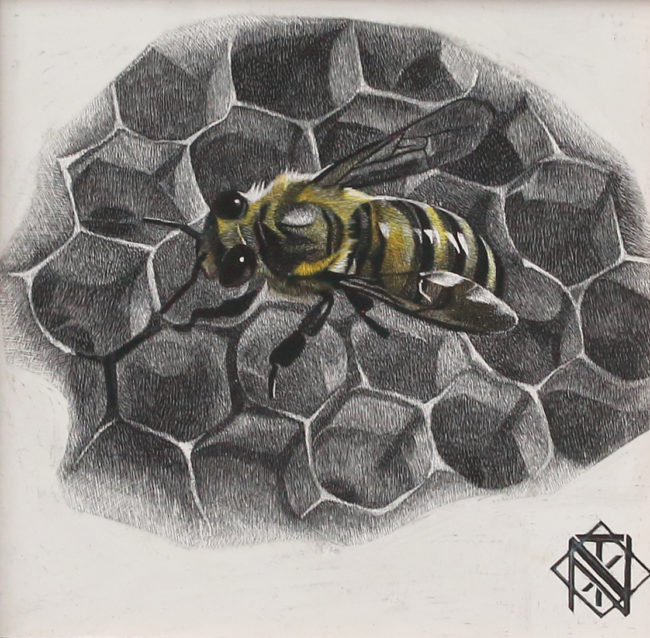 Nelson Tucker Scratchboard Bee on Honeycomb 2 Scratchboard