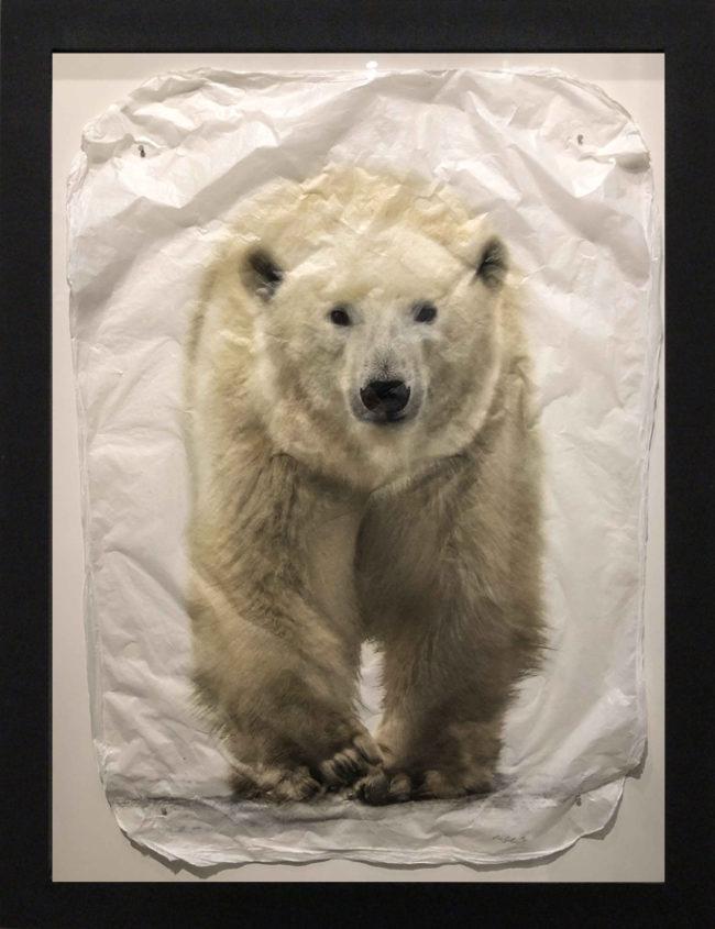 Pete Zaluzec Printmaking Sno Bear Gampi Print
