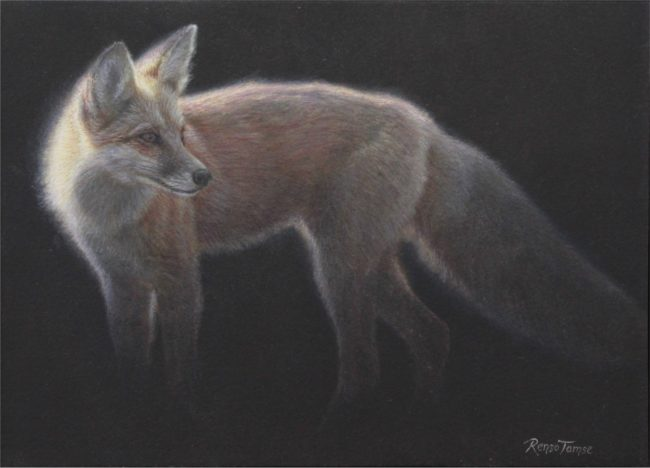 Renso Tamse Painting Flamy Fox Watercolor