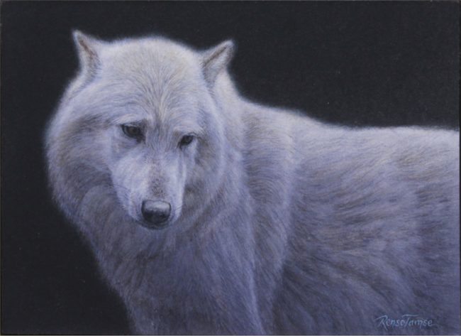 Renso Tamse Painting Soul Wolf Watercolor