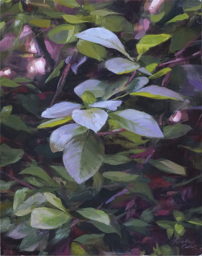 Robin Cole Painting Thicket Oil on Panel