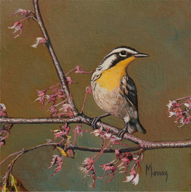 Karla Murray Painting Spring Blossoms Oil on Board