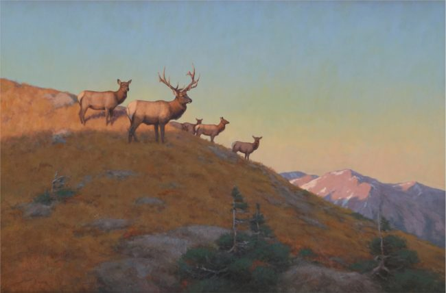 Scott Yeager Painting Aplenglow Elk Oil on Board