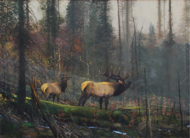 Michael Coleman Painting Light in the Forest Oil on Board