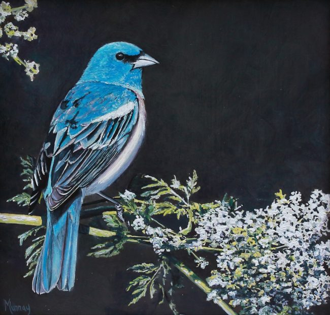 Karla Murray Painting Lazuli Bunting with White Flowers Oil on Board